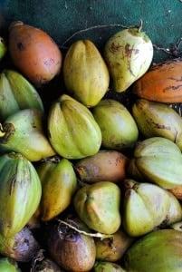 Maui's Road Side Fruit Stand