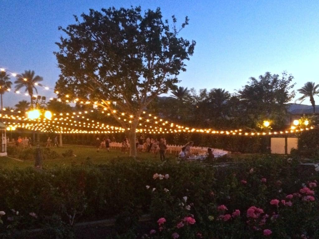Outstanding in the Field - Coachella Music Festival