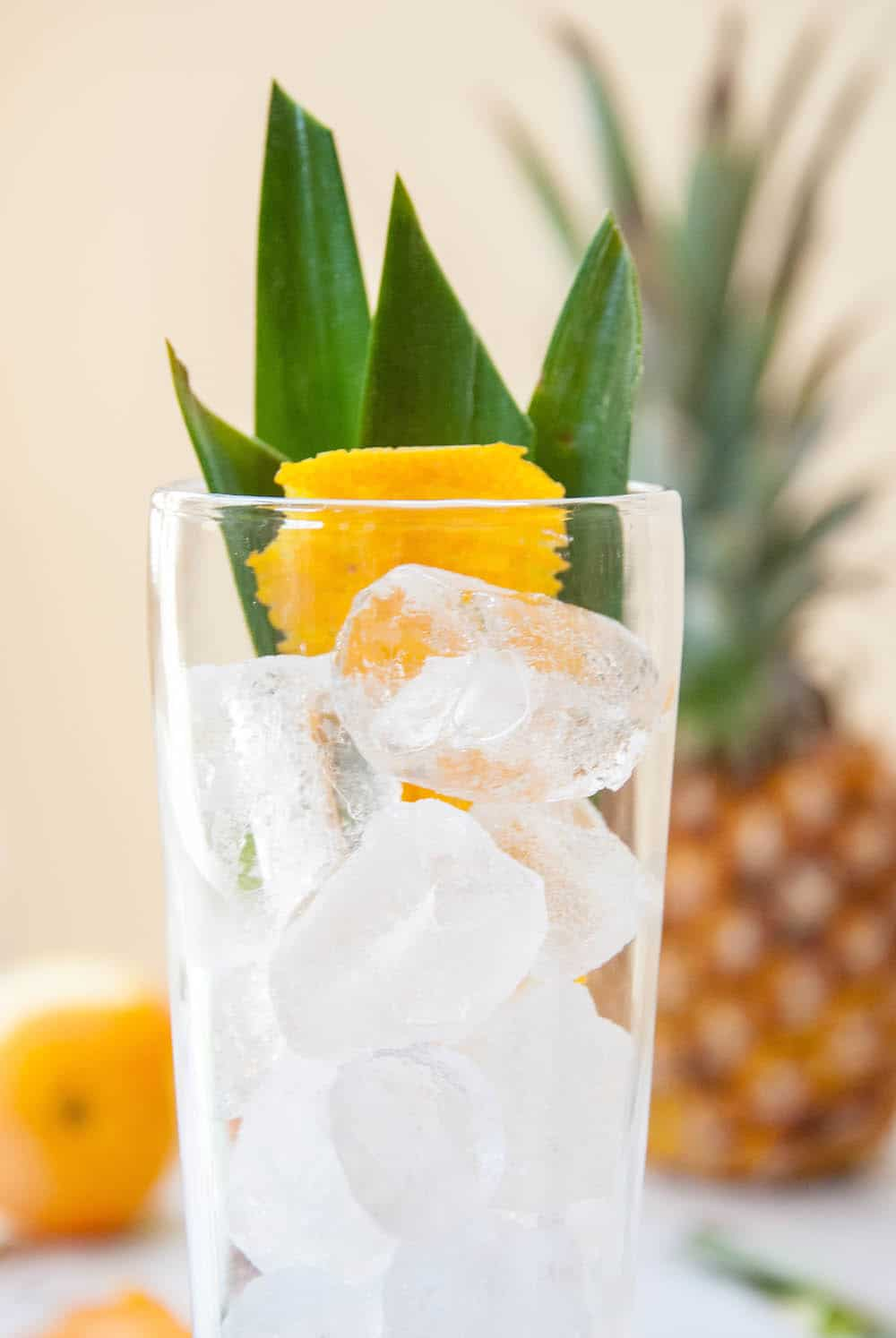 Island-Inspired Edible Cocktail Garnish: Pineapple Leaves + Citrus Peel