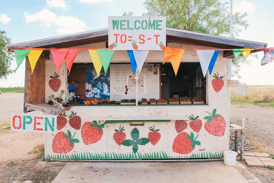 Adorable Strawberry Stand in Sacramento