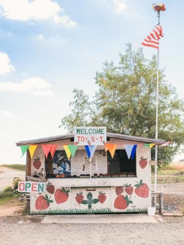 Adorable Strawberry Stand in Sacramento, Ca